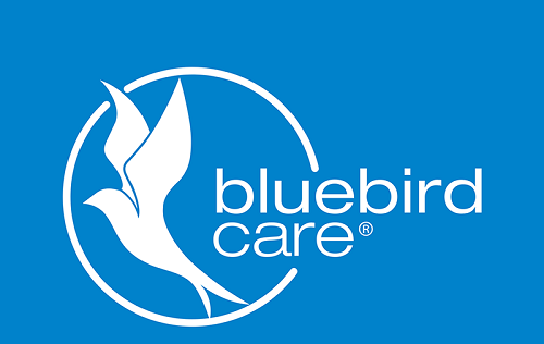 Bluebird Care jobs